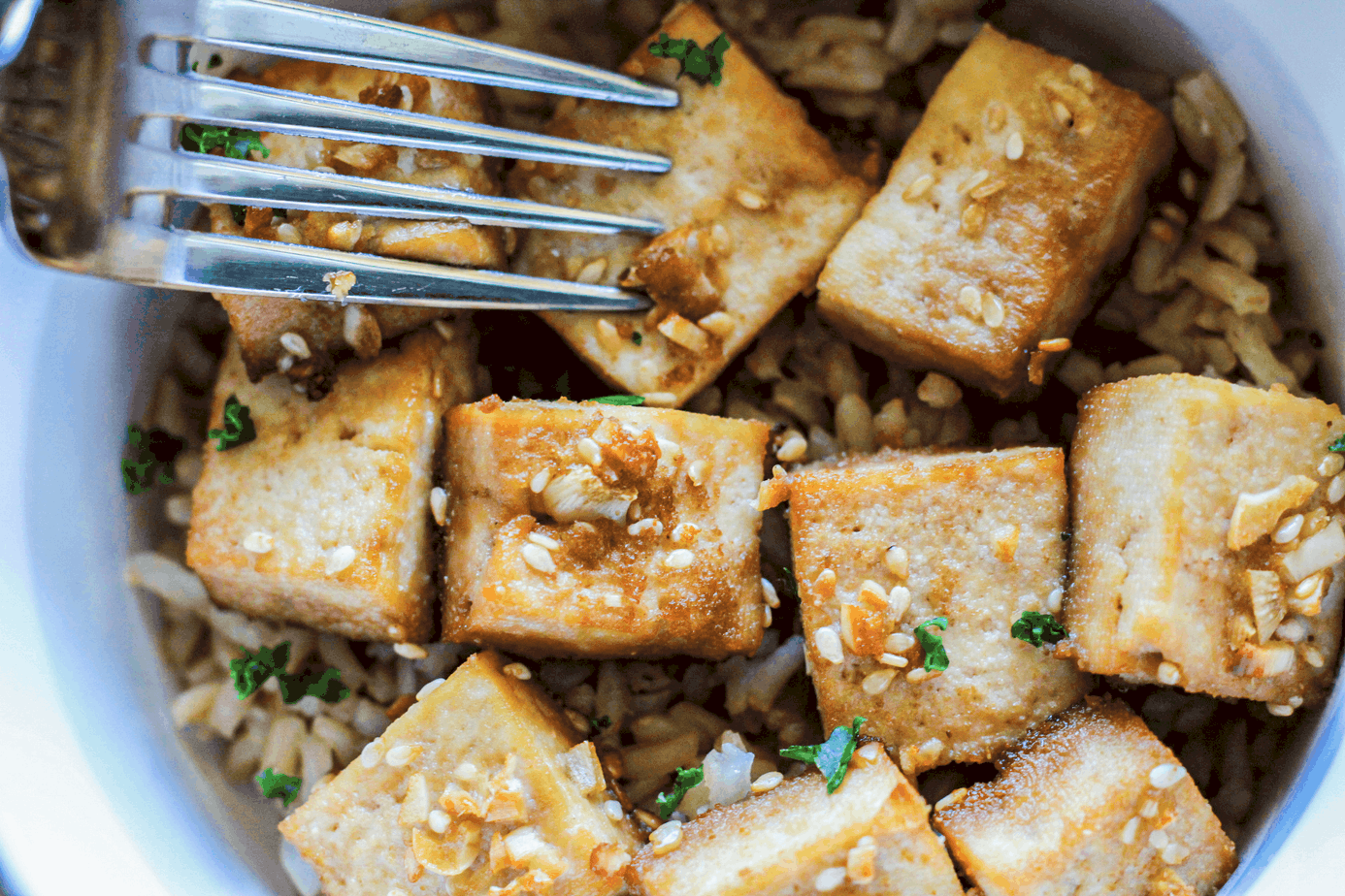 Baked Marinated Tofu Recipe